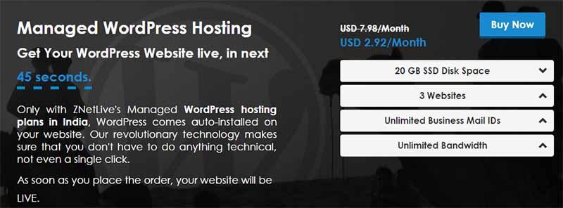 Znetlive Managed WP hosting