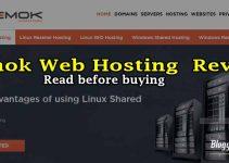 temok-hosting-review